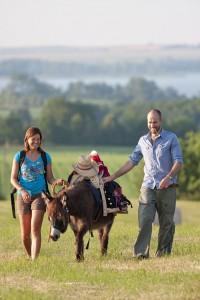 Wandern ohne Gepäck - in der Uckermark heißt das: Ein Esel marschiert mit. Foto: djd/tmu Uckermark/Klaus-Peter Kappest