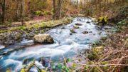 Der Fluss Düssel im Kreis Mettmann