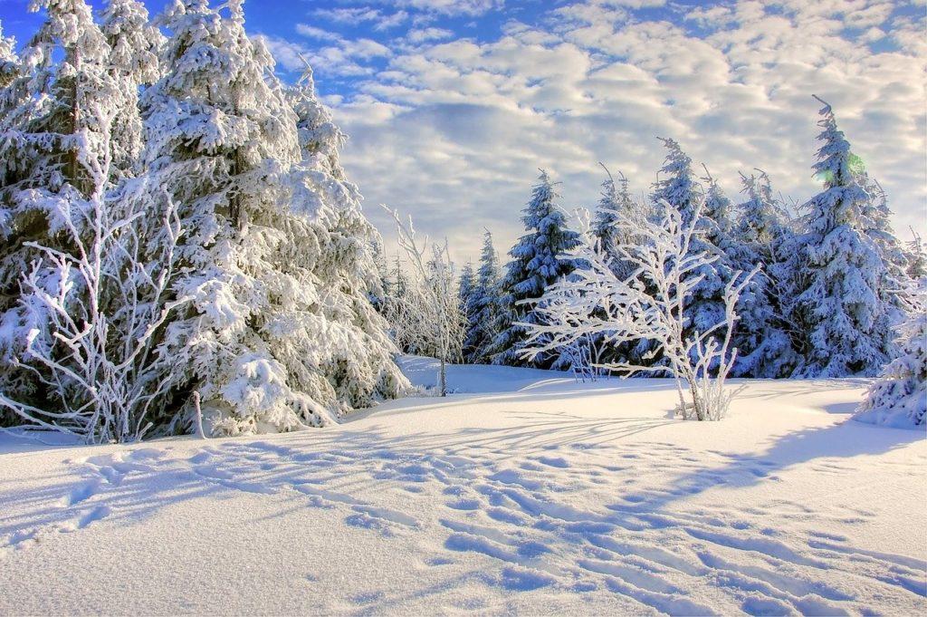 Winterlandschaft im Harz - ideal zum Skifahren