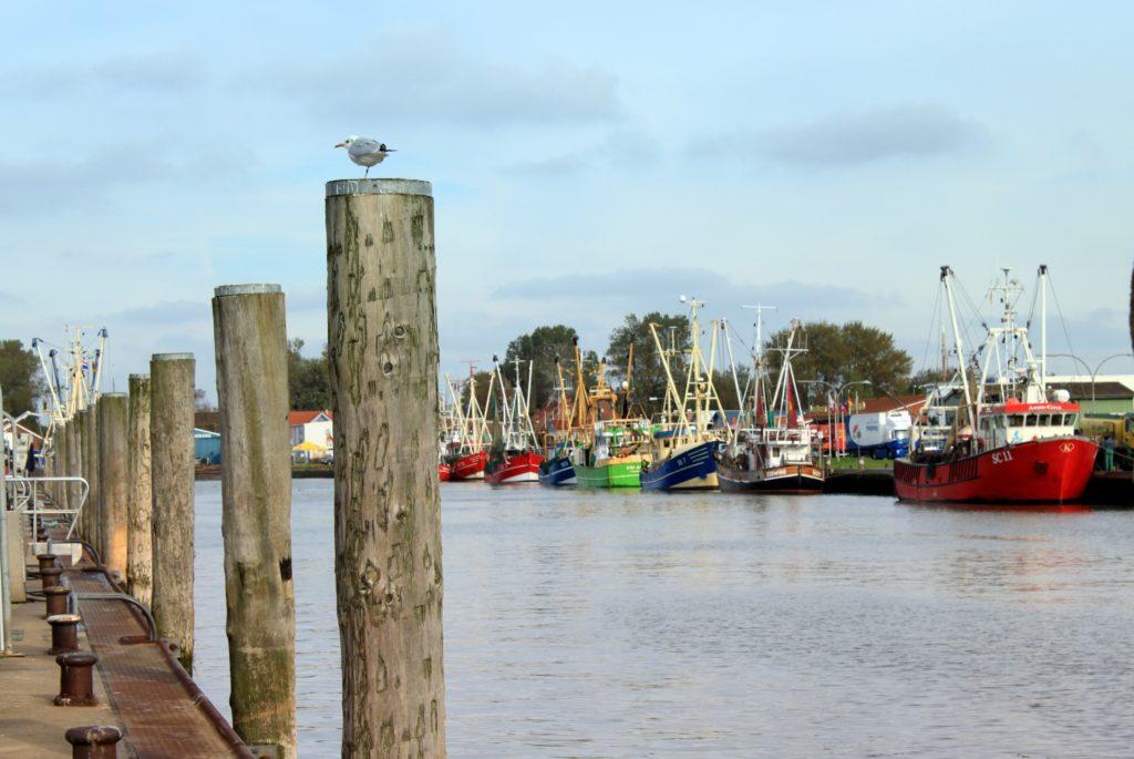 Der Hafen von Büsum an der Nordsee