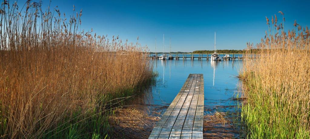 Seglerhafen, Steg im Schilf, Insel Rügen, Mecklenburg-Vorpommer